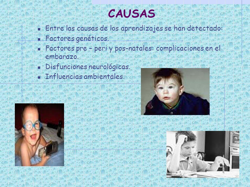 CAUSAS Entre las causas de los aprendizajes se han detectado: