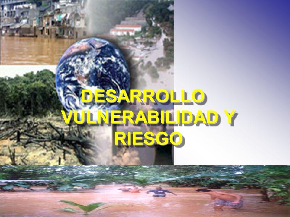 DESARROLLO VULNERABILIDAD Y RIESGO