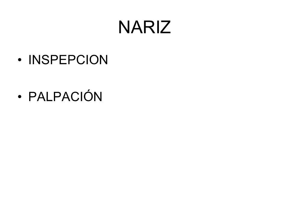NARIZ INSPEPCION PALPACIÓN