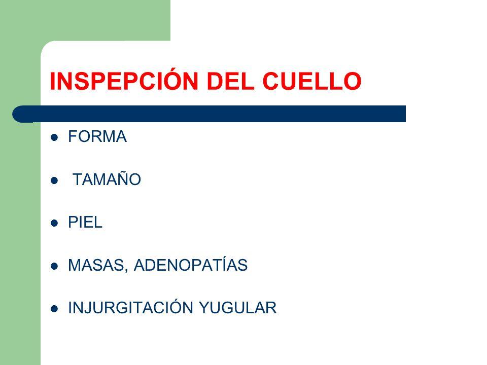 INSPEPCIÓN DEL CUELLO FORMA TAMAÑO PIEL MASAS, ADENOPATÍAS