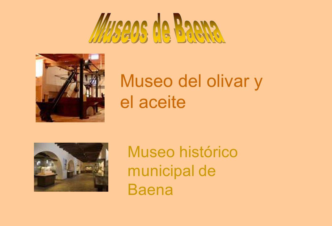 Museo del olivar y el aceite