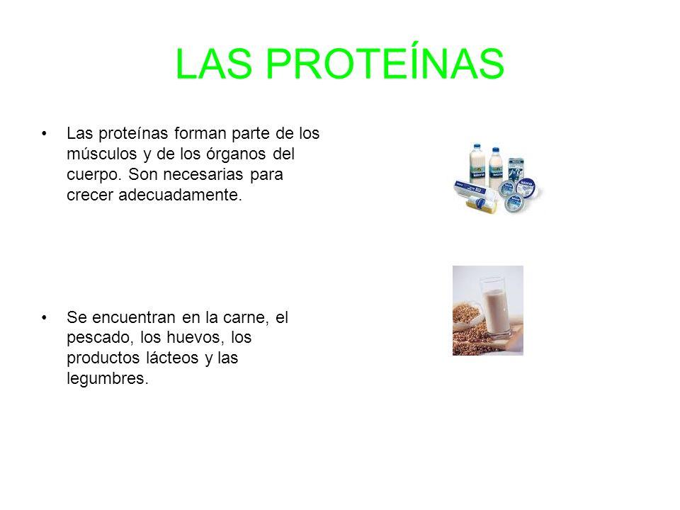 LAS PROTEÍNAS Las proteínas forman parte de los músculos y de los órganos del cuerpo. Son necesarias para crecer adecuadamente.