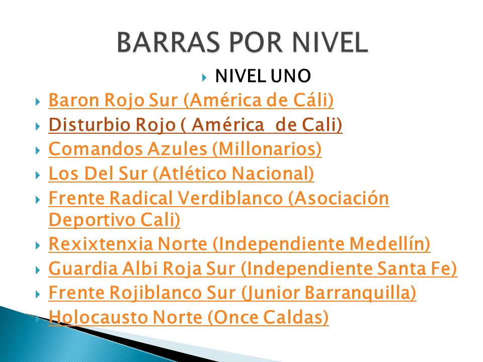 BARRAS POR NIVEL NIVEL UNO Baron Rojo Sur (América de Cáli)