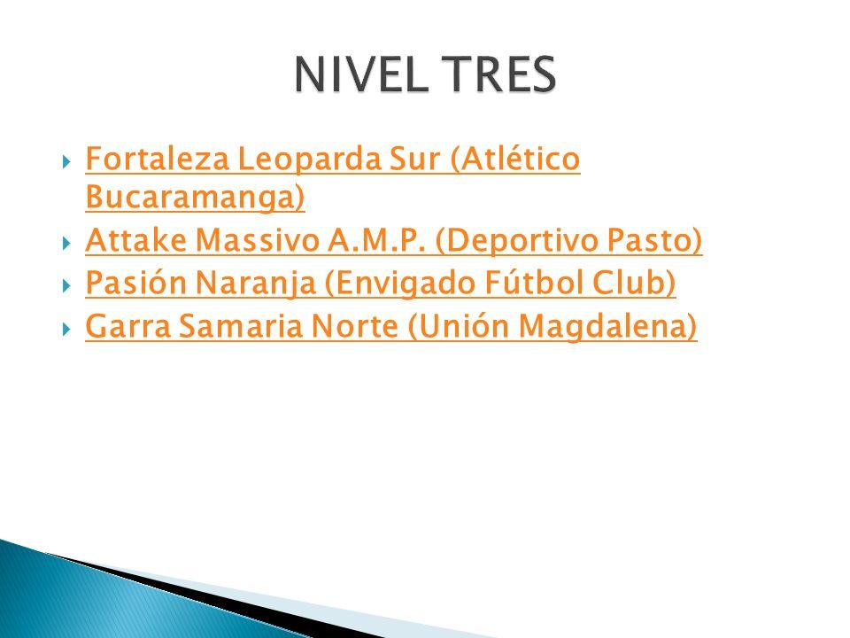 NIVEL TRES Fortaleza Leoparda Sur (Atlético Bucaramanga)
