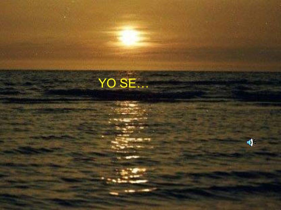 YO SE…