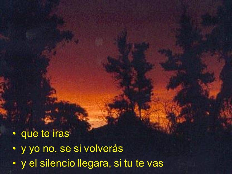 que te iras y yo no, se si volverás y el silencio llegara, si tu te vas