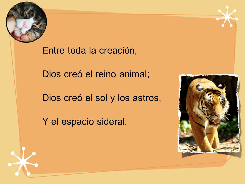 Entre toda la creación, Dios creó el reino animal; Dios creó el sol y los astros, Y el espacio sideral.