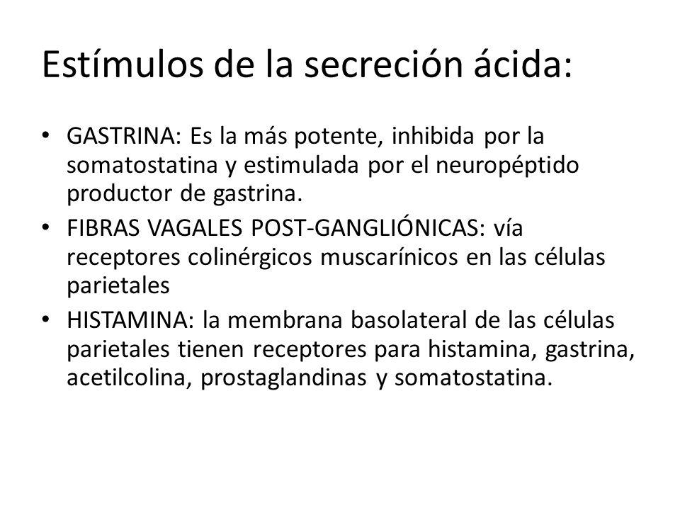 Estímulos de la secreción ácida: