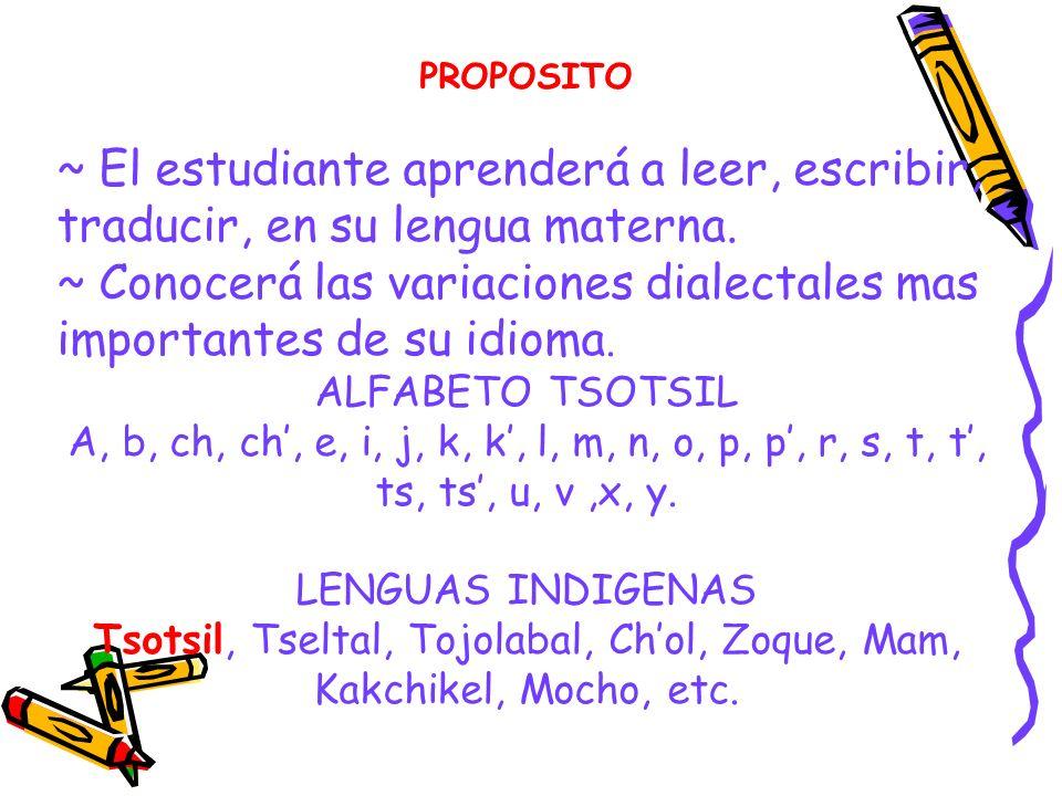 Tsotsil, Tseltal, Tojolabal, Ch'ol, Zoque, Mam, Kakchikel, Mocho, etc.