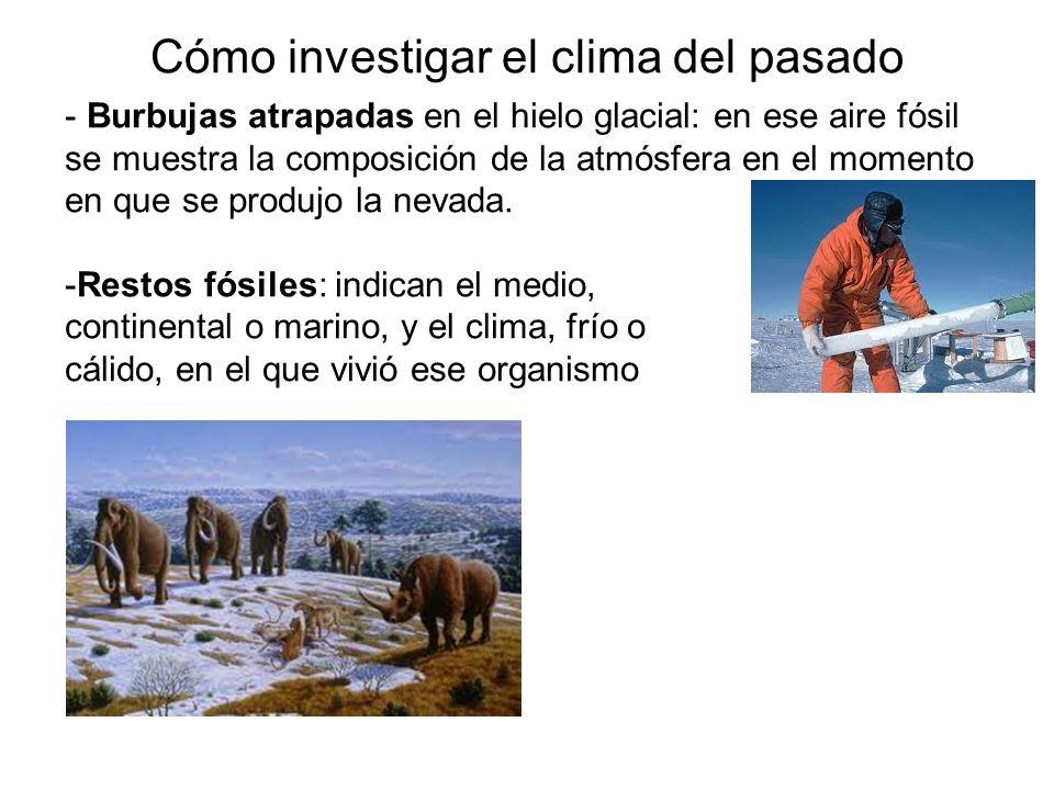 Cómo investigar el clima del pasado
