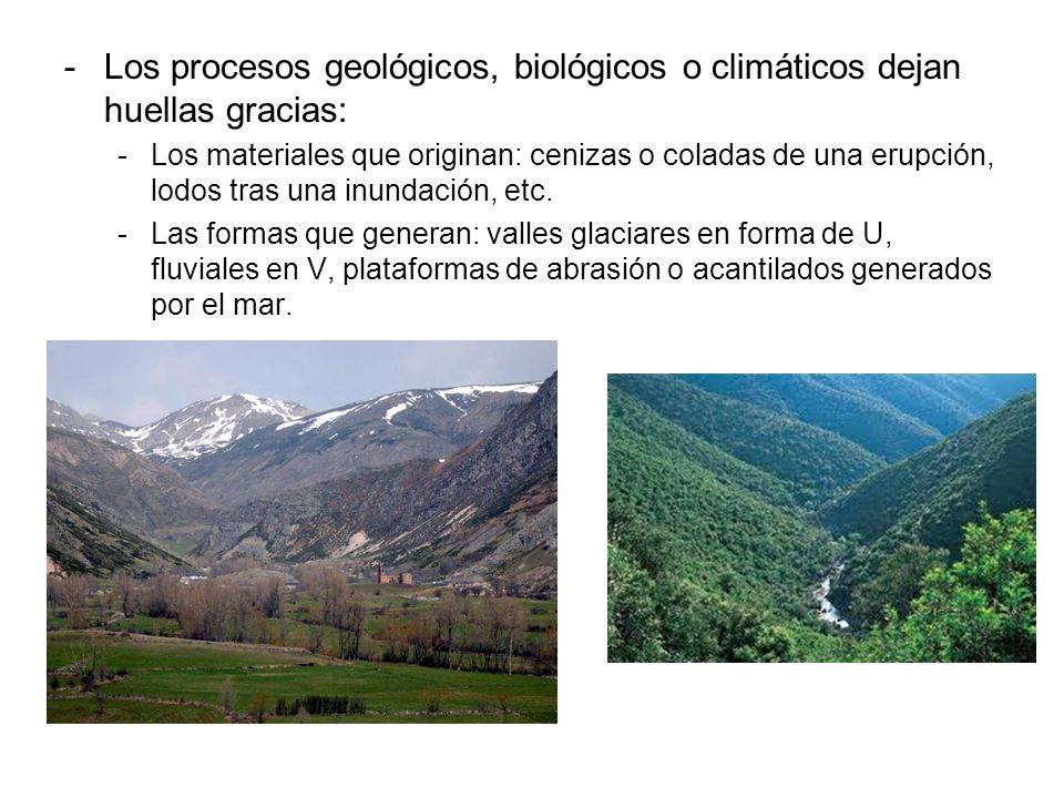 Los procesos geológicos, biológicos o climáticos dejan huellas gracias:
