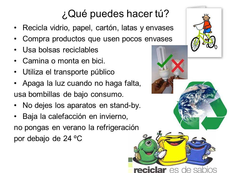 ¿Qué puedes hacer tú Recicla vidrio, papel, cartón, latas y envases