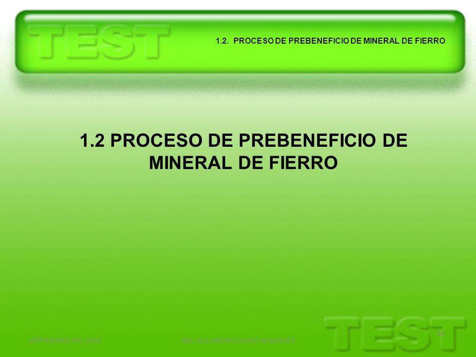 1.2 PROCESO DE PREBENEFICIO DE MINERAL DE FIERRO