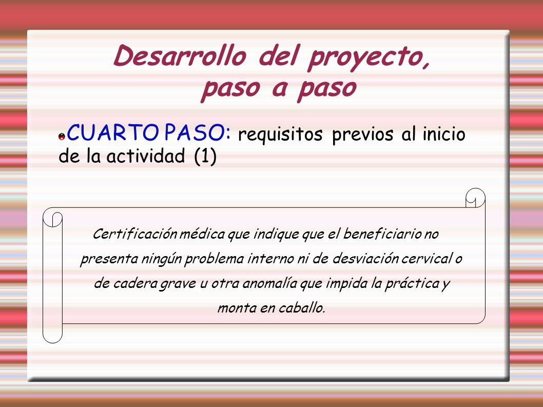 Desarrollo del proyecto, paso a paso