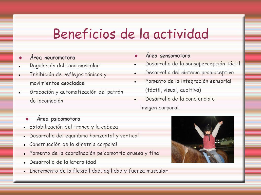 Beneficios de la actividad
