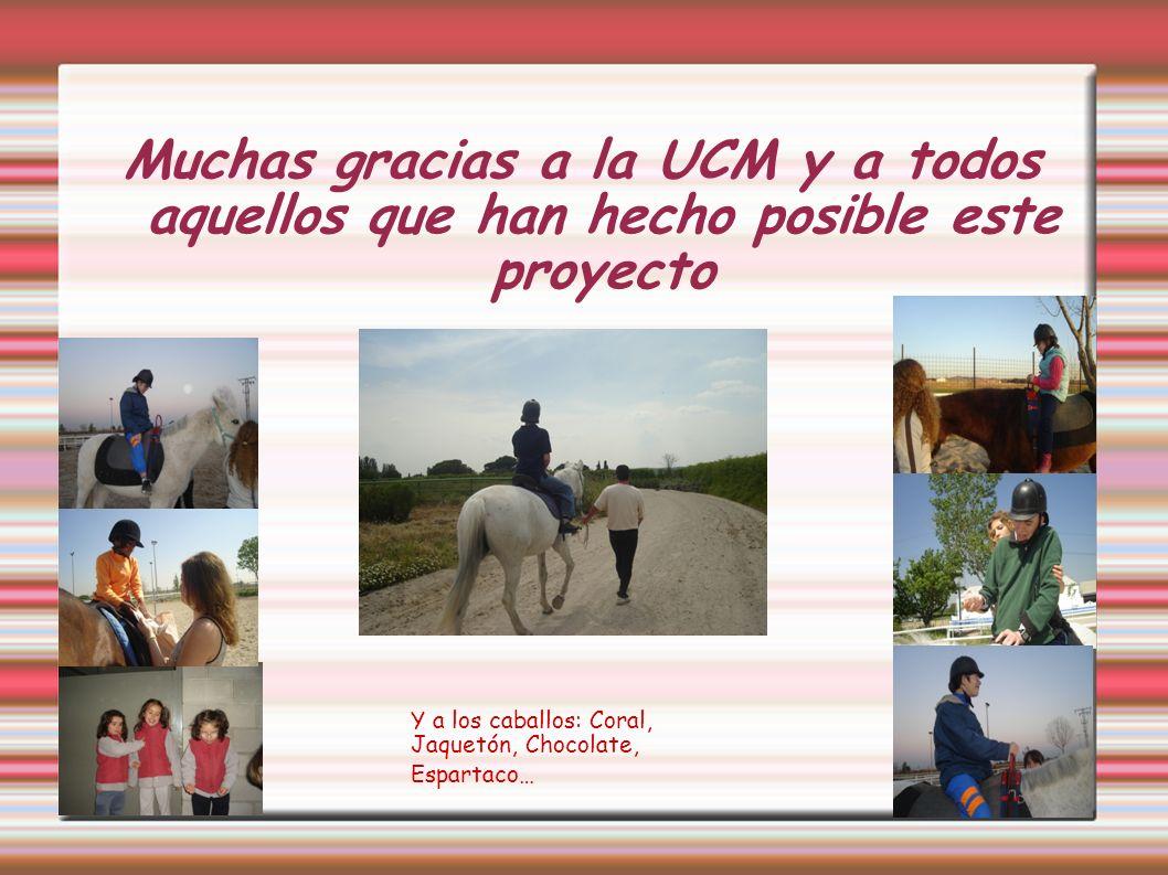 Muchas gracias a la UCM y a todos aquellos que han hecho posible este proyecto