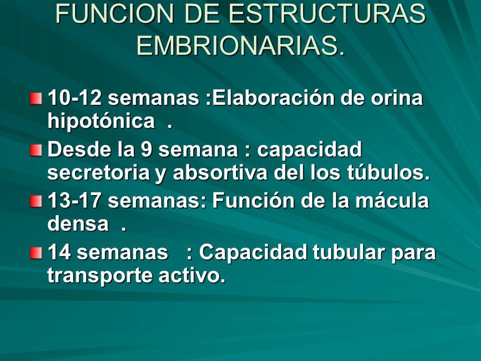 FUNCION DE ESTRUCTURAS EMBRIONARIAS.