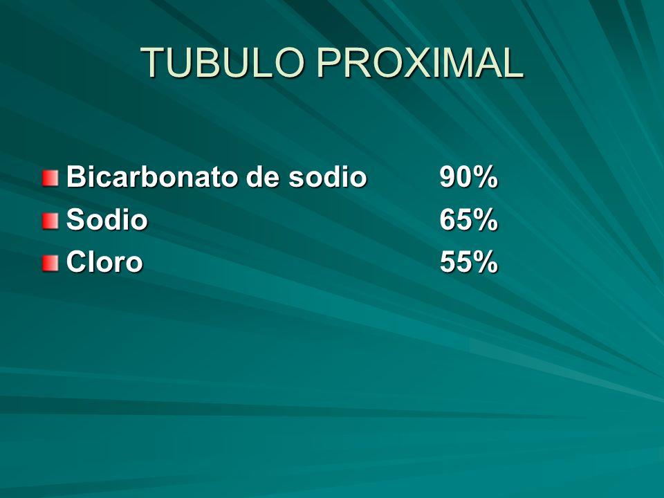 TUBULO PROXIMAL Bicarbonato de sodio 90% Sodio 65% Cloro 55%