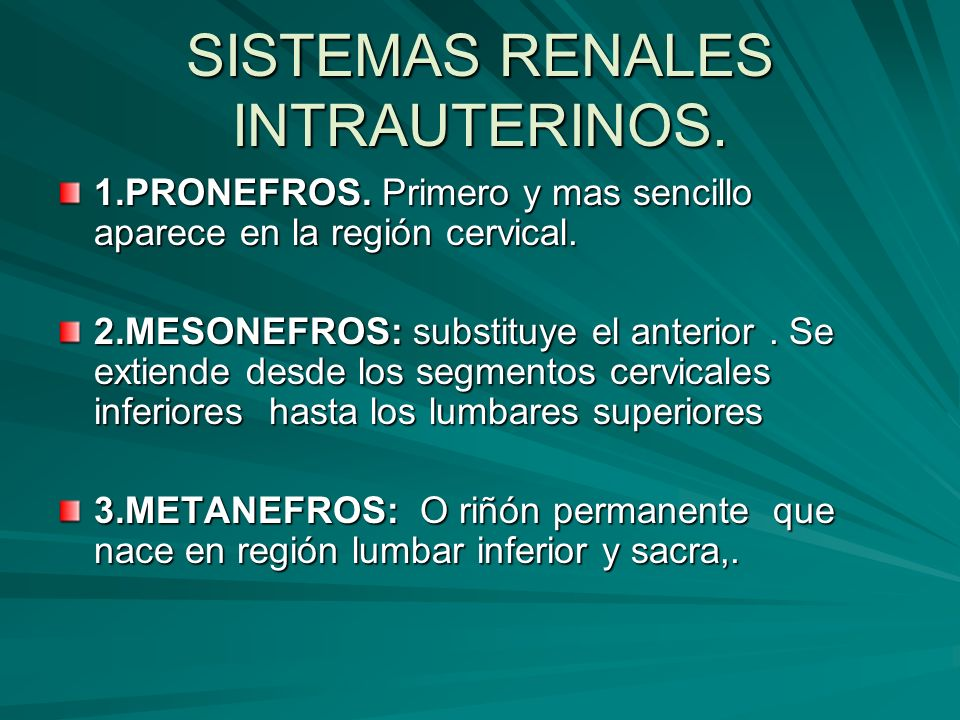 SISTEMAS RENALES INTRAUTERINOS.