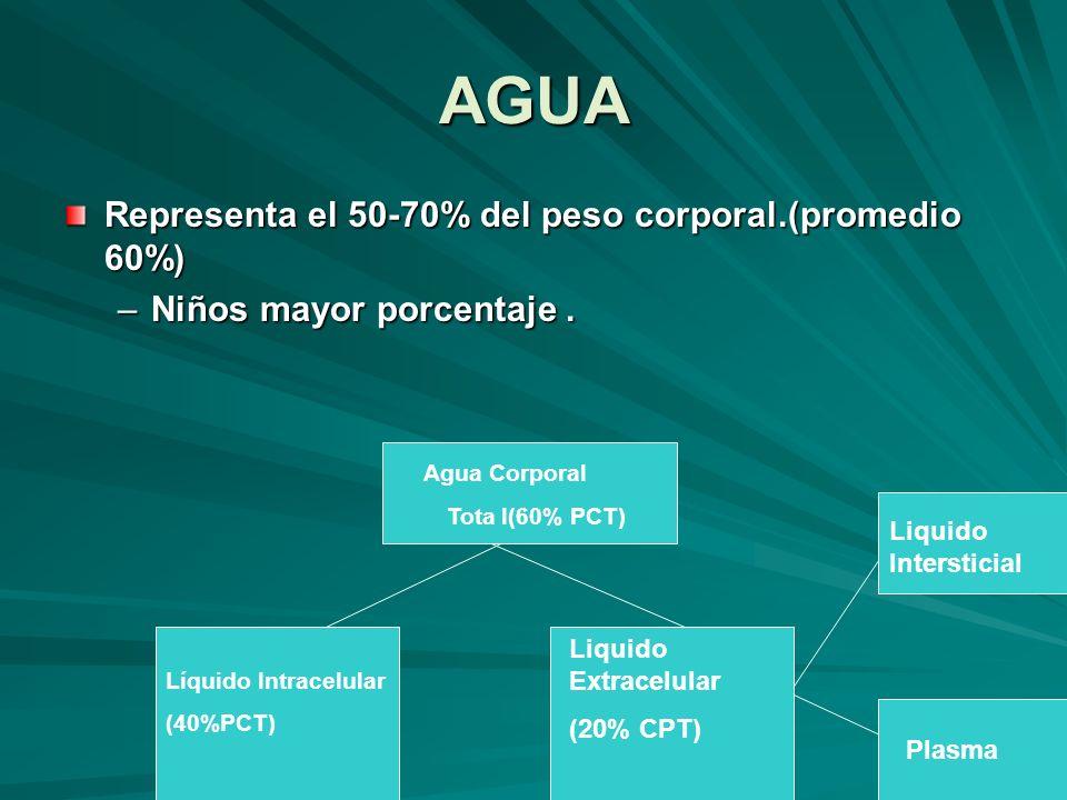 AGUA Representa el 50-70% del peso corporal.(promedio 60%)