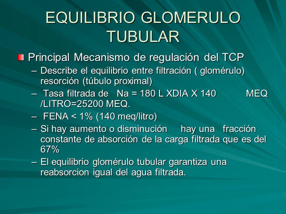 EQUILIBRIO GLOMERULO TUBULAR