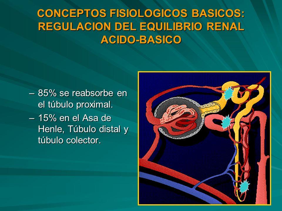 CONCEPTOS FISIOLOGICOS BASICOS: REGULACION DEL EQUILIBRIO RENAL ACIDO-BASICO
