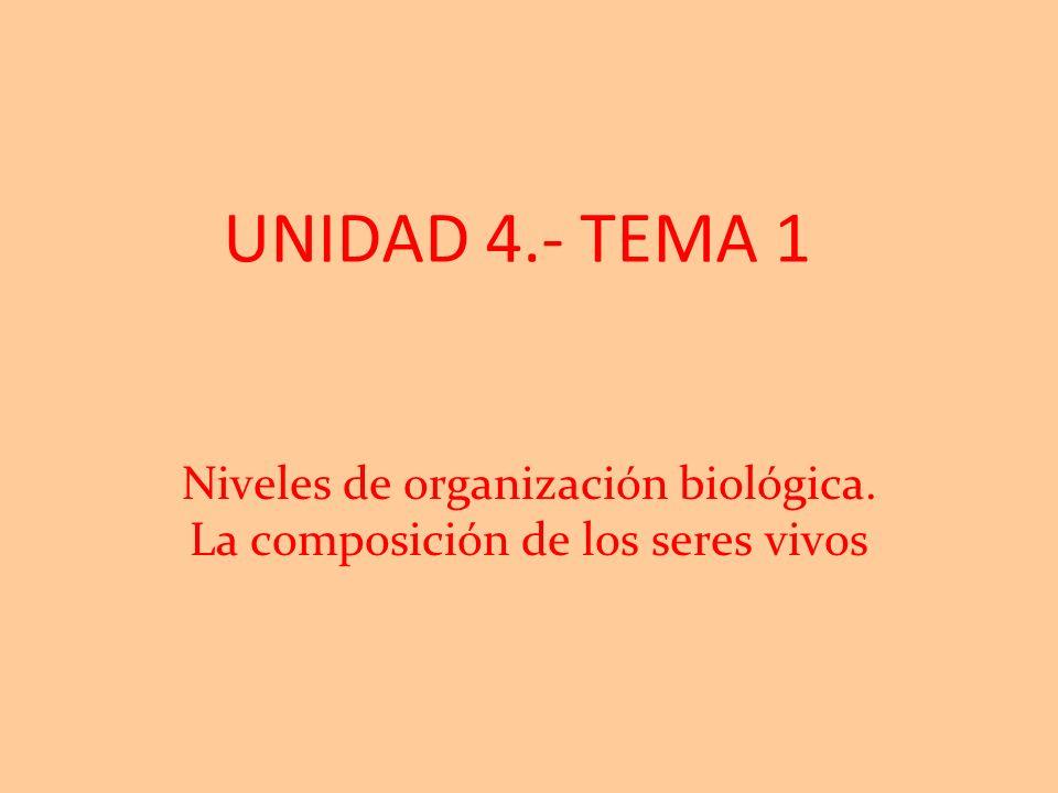 Niveles de organización biológica. La composición de los seres vivos