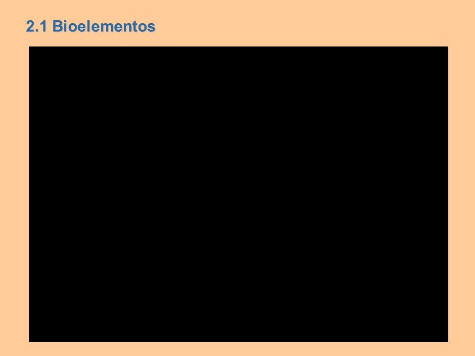 2.1 Bioelementos