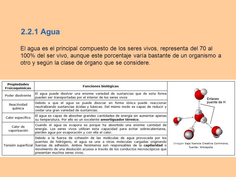 2.2.1 Agua