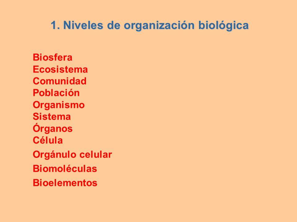 1. Niveles de organización biológica