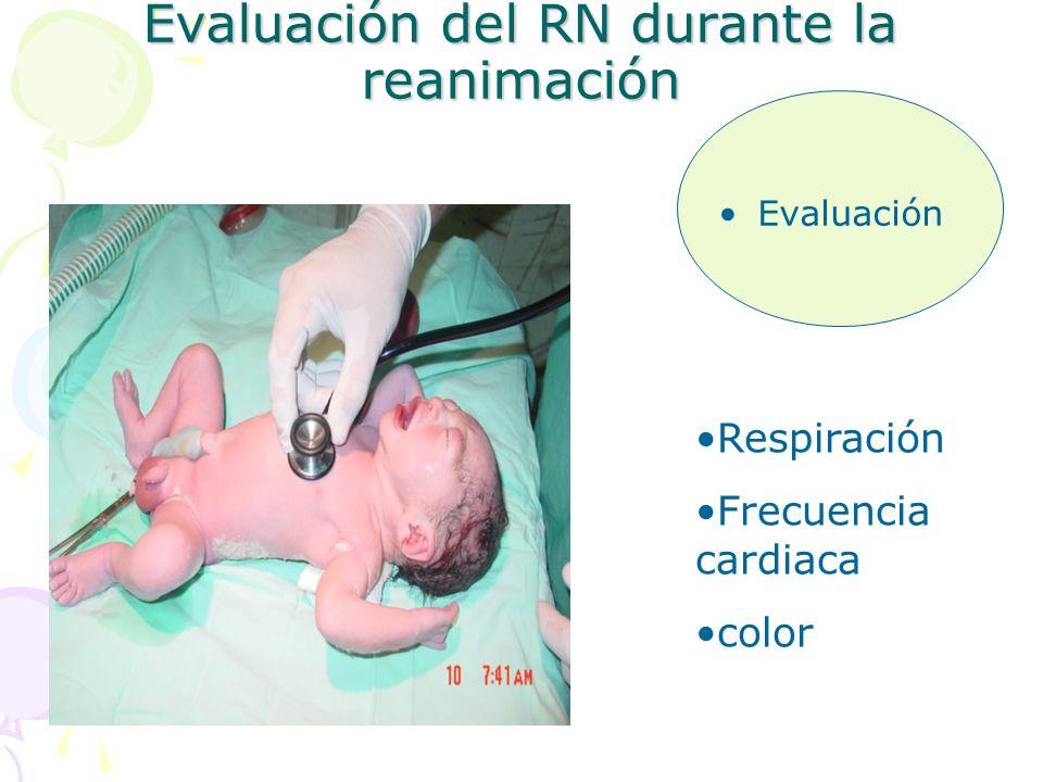 Evaluación del RN durante la reanimación