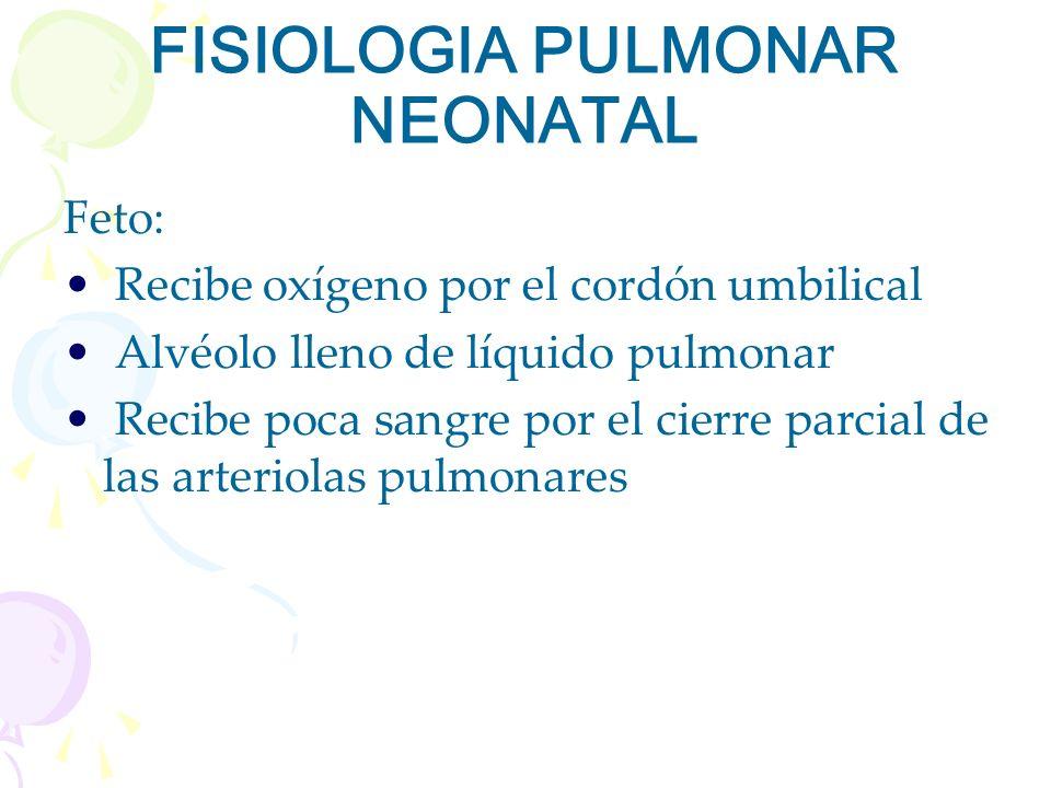 FISIOLOGIA PULMONAR NEONATAL