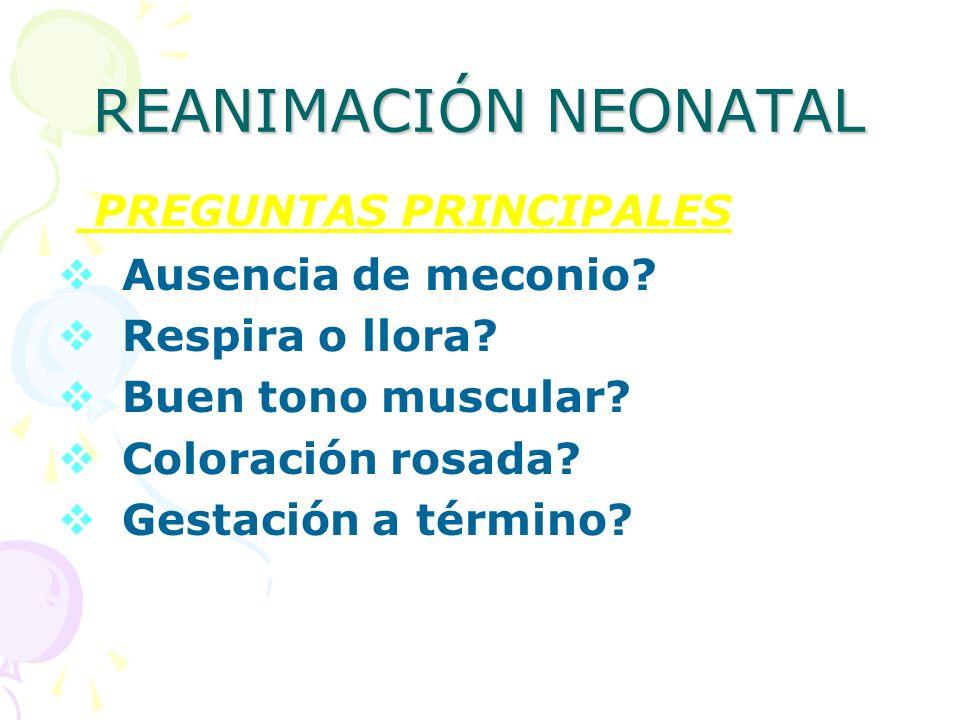 REANIMACIÓN NEONATAL PREGUNTAS PRINCIPALES Ausencia de meconio