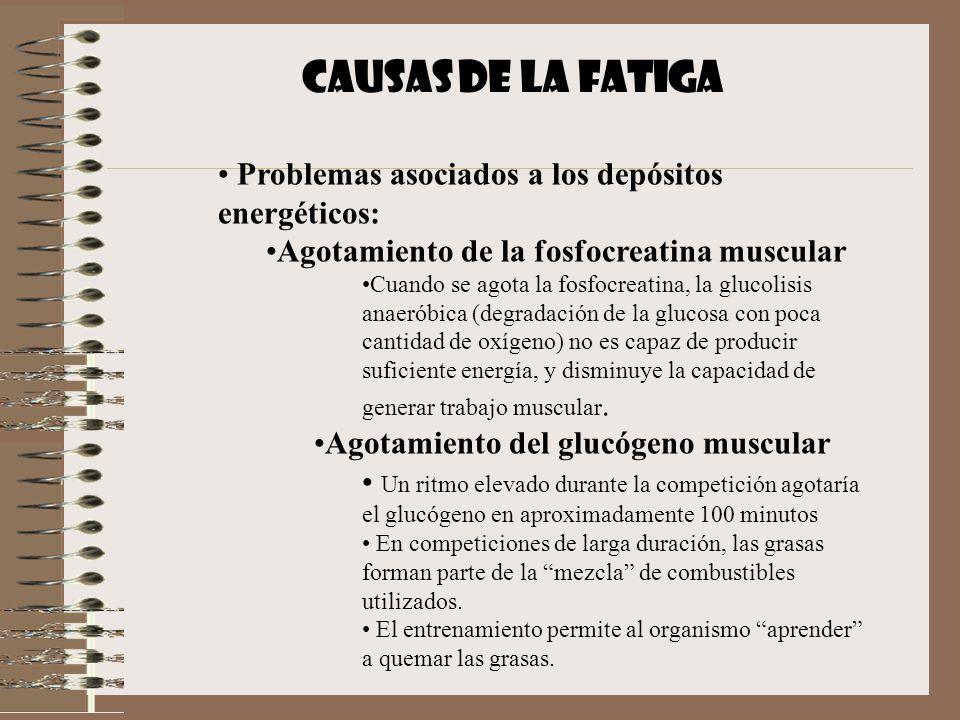 CAUSAS DE LA FATIGA Problemas asociados a los depósitos energéticos: