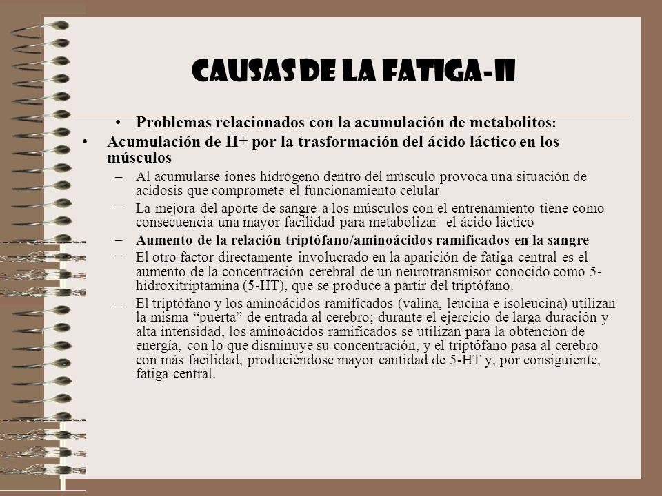 CAUSAS DE LA FATIGA-II Problemas relacionados con la acumulación de metabolitos: