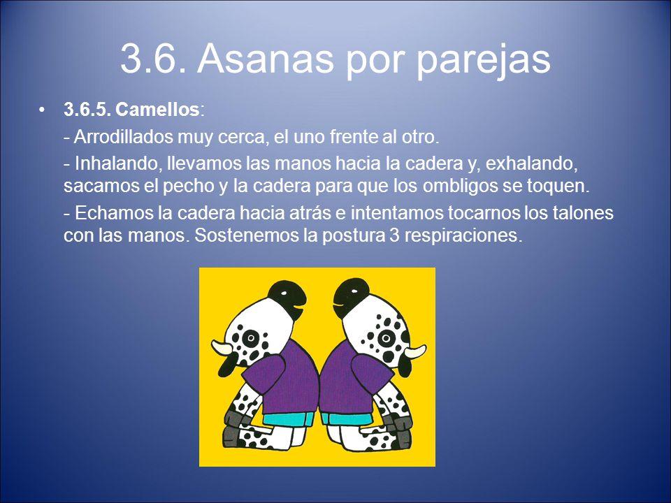 3.6. Asanas por parejas 3.6.5. Camellos: