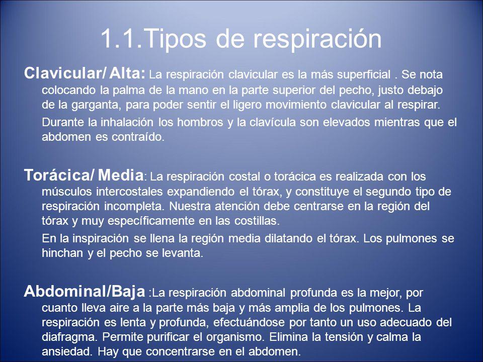 1.1.Tipos de respiración