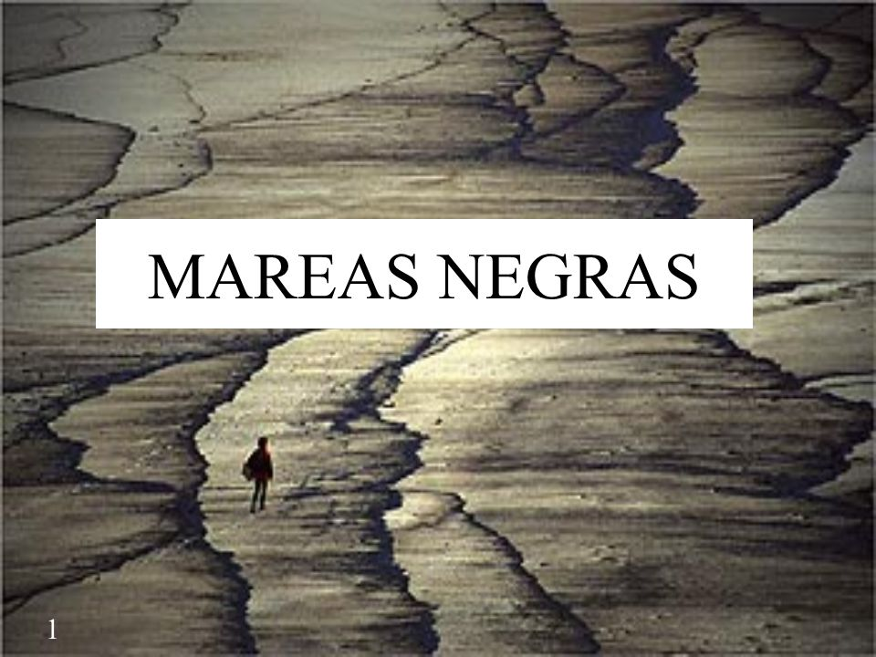 MAREAS NEGRAS The accidente of Prestige took place on the 13rd of November 2002 near Galicia.