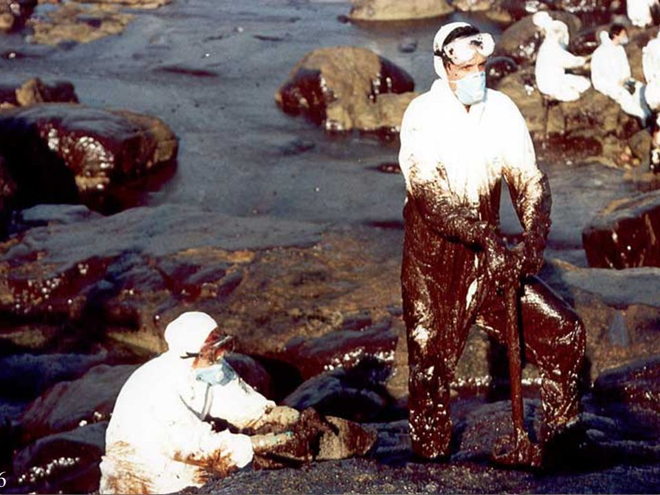Now we are going to study the consequences of an oil spill, like the Prestige disaster.