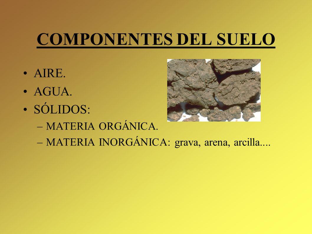 Qu es el suelo ppt video online descargar for Componentes quimicos del suelo