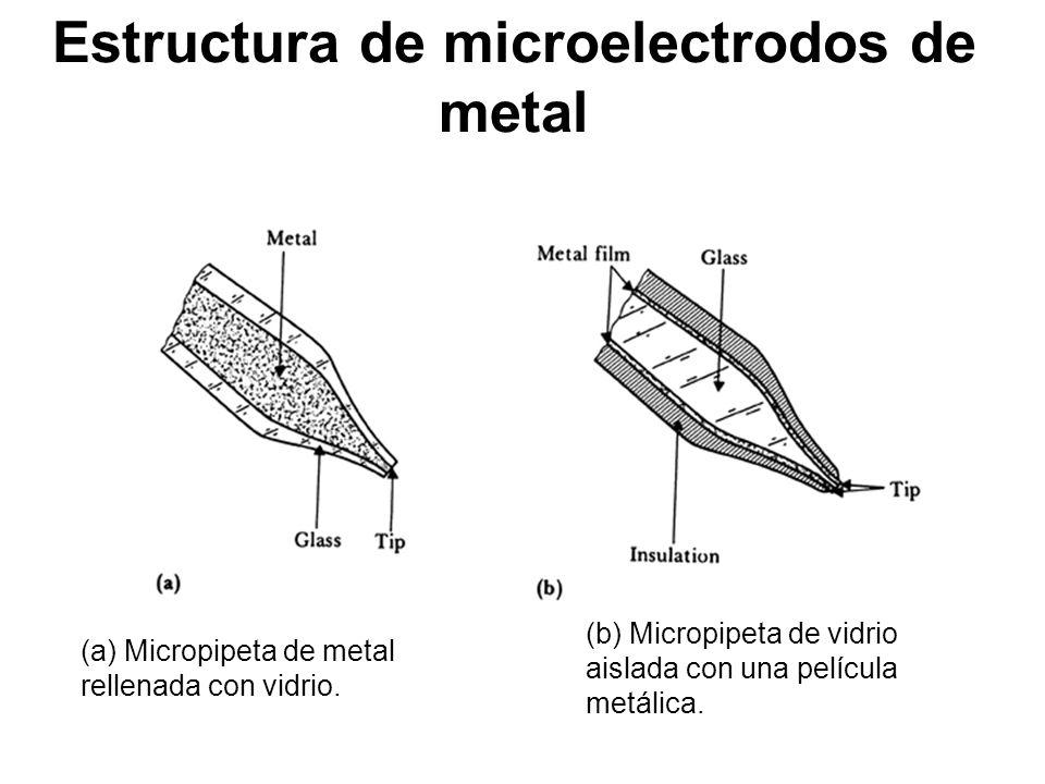 Electromedicina e instrumentaci n biom dica ppt descargar - Estructura de metal ...