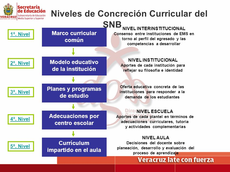 Niveles de Concreción Curricular del SNB