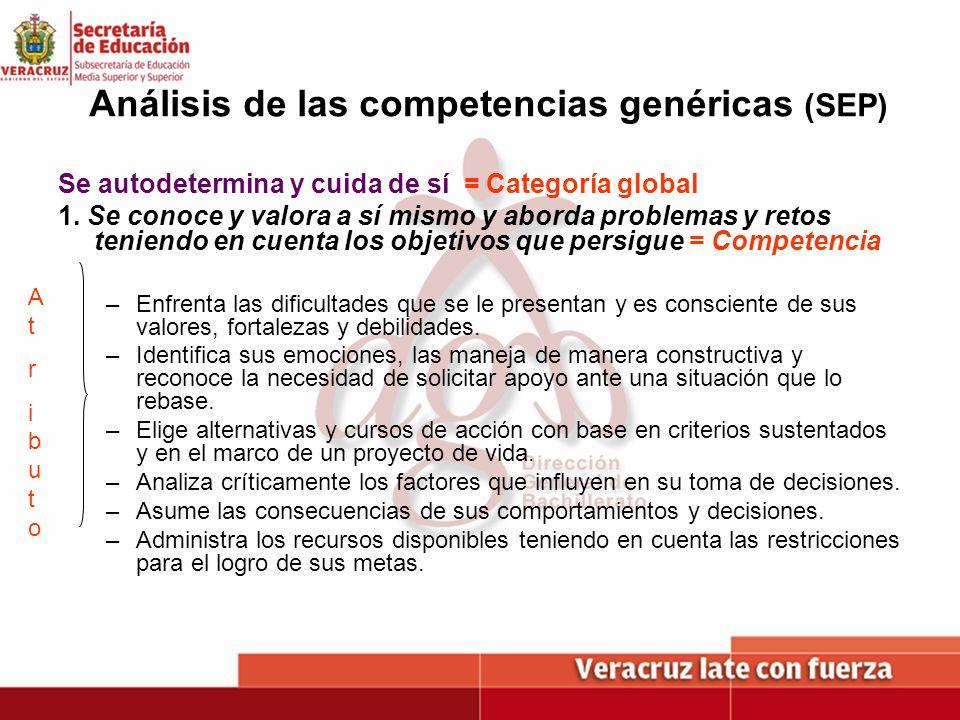 Análisis de las competencias genéricas (SEP)