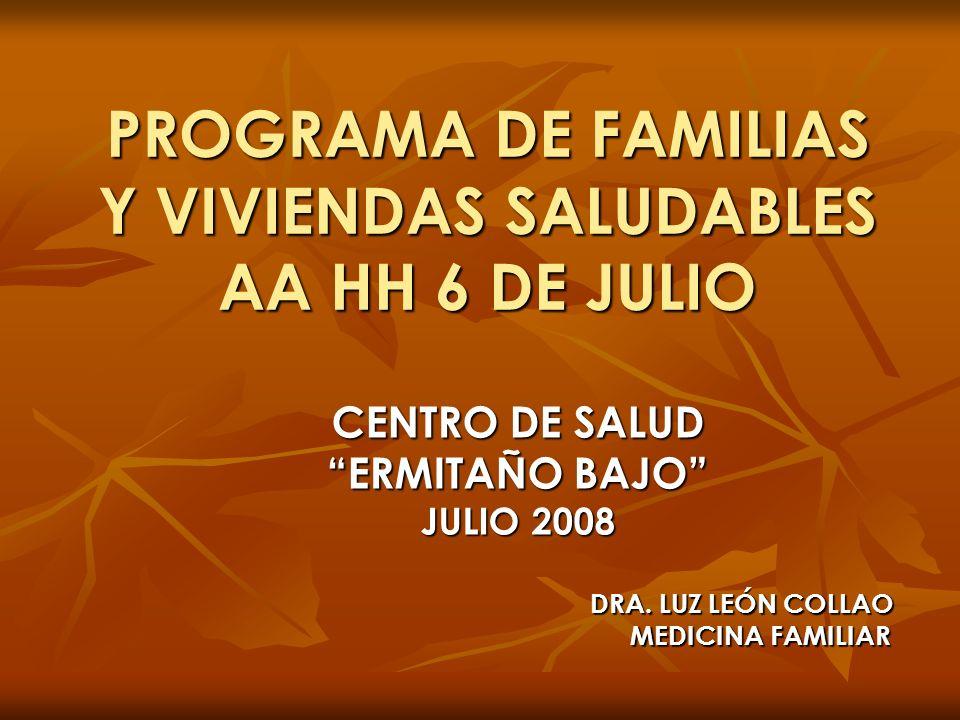 PROGRAMA DE FAMILIAS Y VIVIENDAS SALUDABLES AA HH 6 DE JULIO