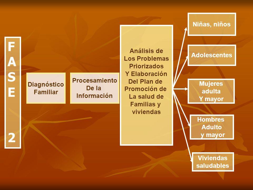 F A S E 2 Niñas, niños Análisis de Los Problemas Priorizados
