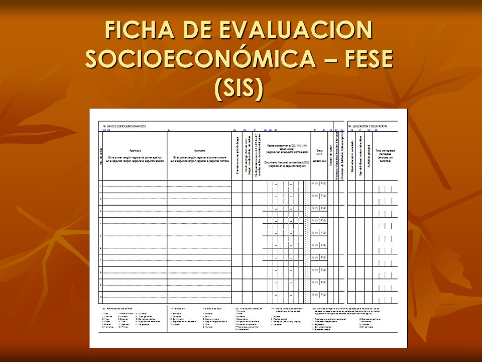 FICHA DE EVALUACION SOCIOECONÓMICA – FESE (SIS)