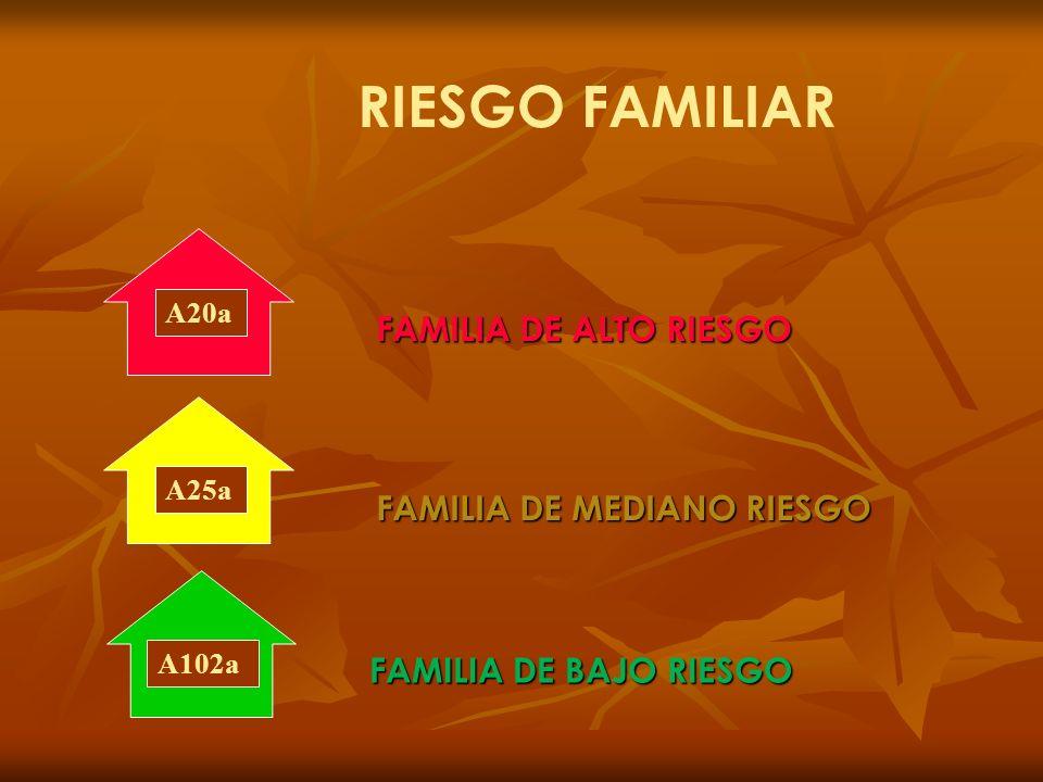 RIESGO FAMILIAR FAMILIA DE ALTO RIESGO FAMILIA DE MEDIANO RIESGO