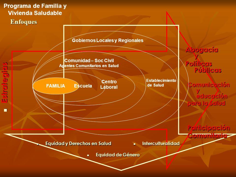 Programa de Familia y Vivienda Saludable Agentes Comunitarios en Salud