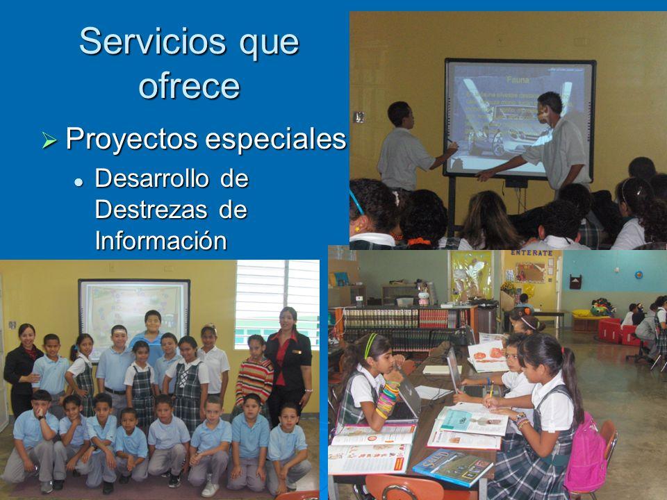 Servicios que ofrece Proyectos especiales