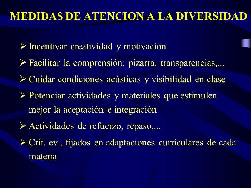 MEDIDAS DE ATENCION A LA DIVERSIDAD